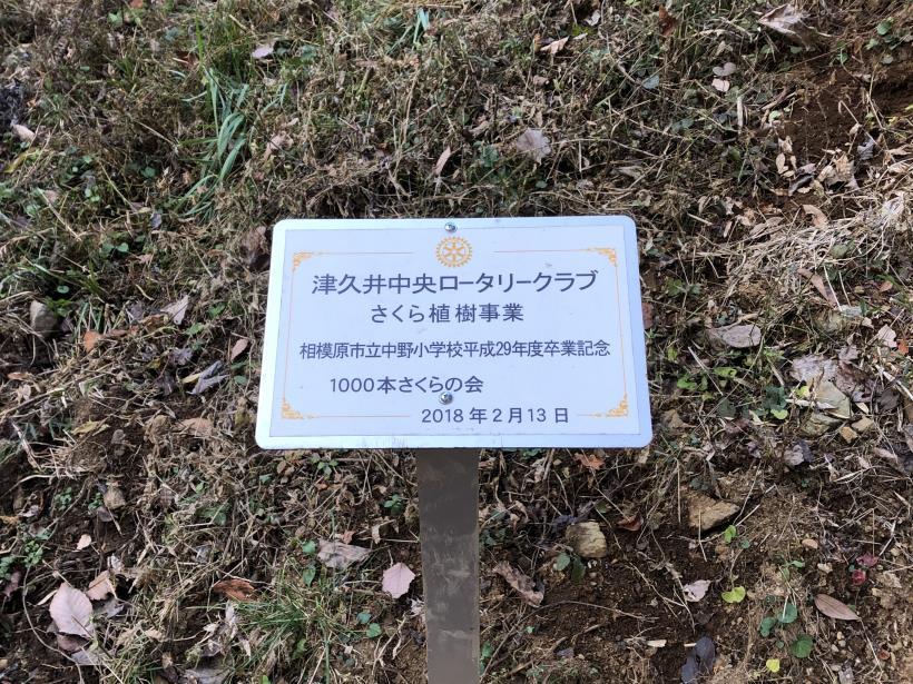 津久井堂所山21