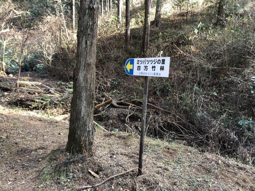 津久井堂所山35