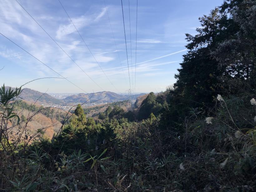 津久井堂所山59