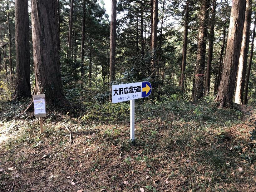 津久井堂所山80