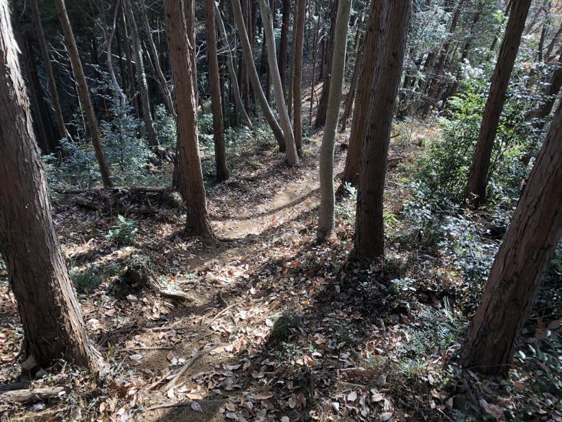 津久井堂所山85