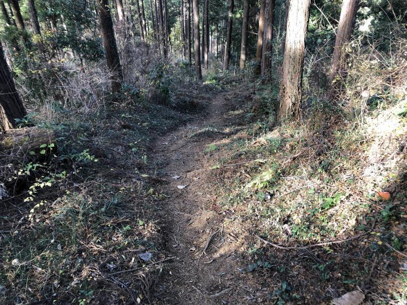 津久井堂所山105