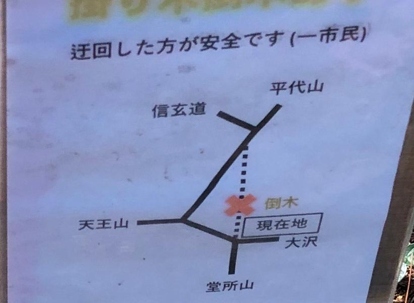 津久井堂所山81B