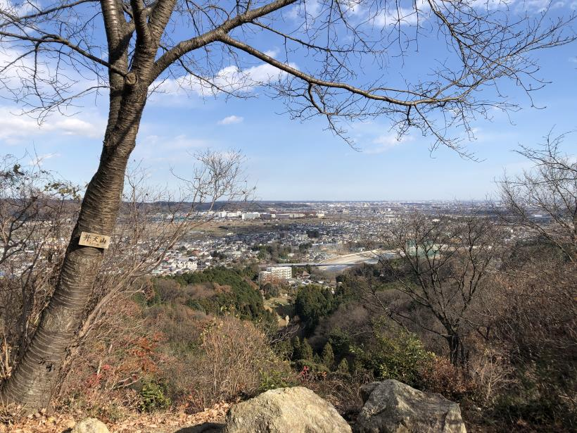 網代弁天山から高尾神社10