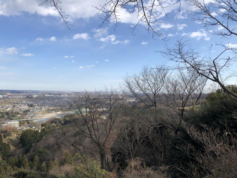 網代弁天山から高尾神社13