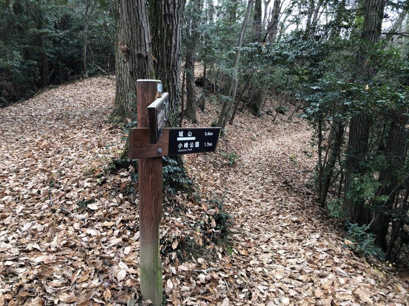 網代弁天山から高尾神社16