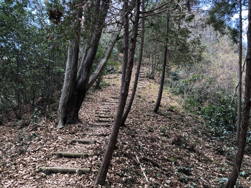 網代弁天山から高尾神社19