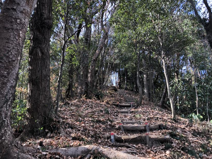 網代弁天山から高尾神社20