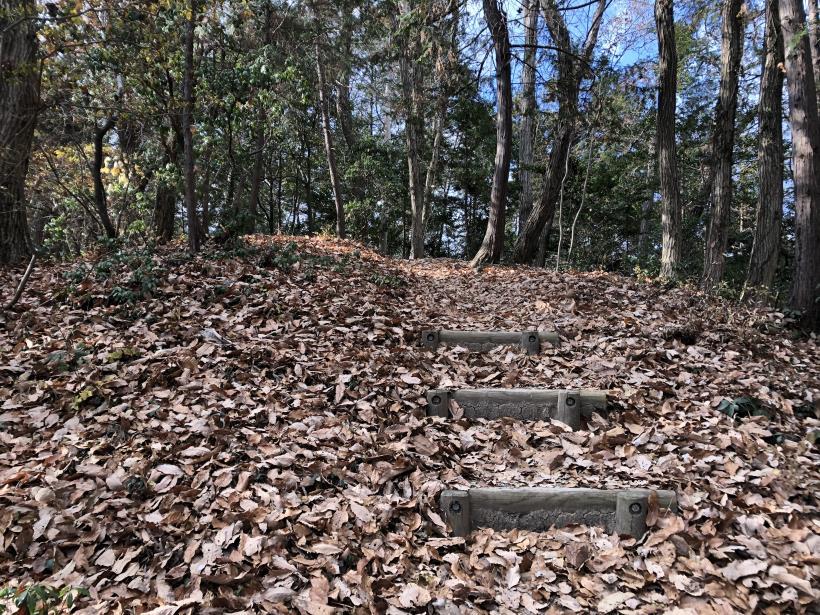 網代弁天山から高尾神社21