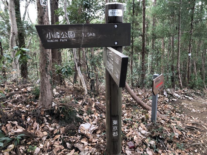 網代弁天山から高尾神社27