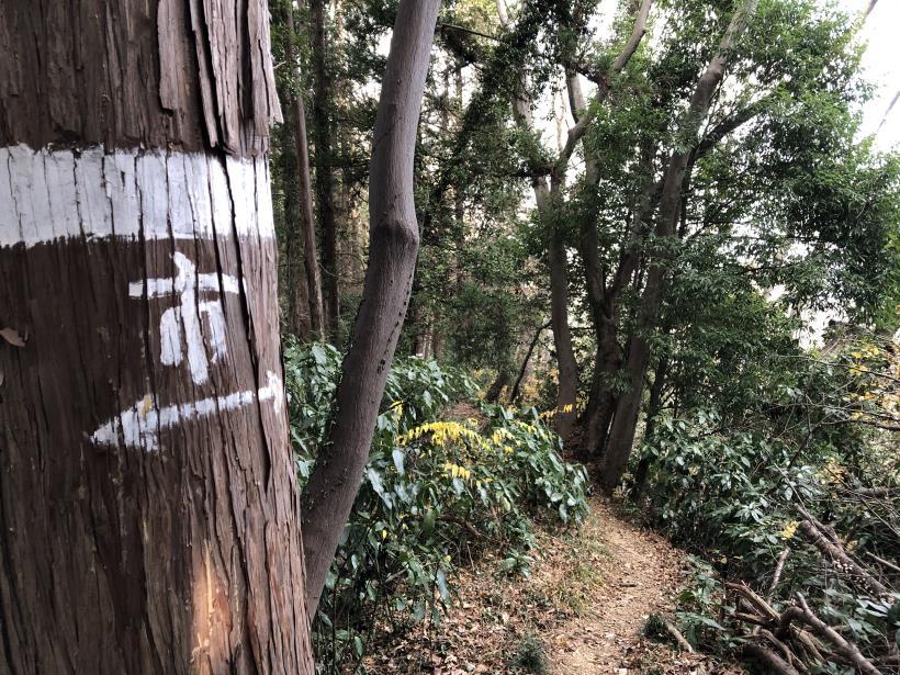 網代弁天山から高尾神社31