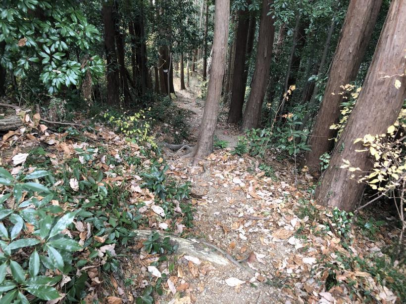 網代弁天山から高尾神社33