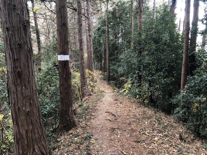 網代弁天山から高尾神社36