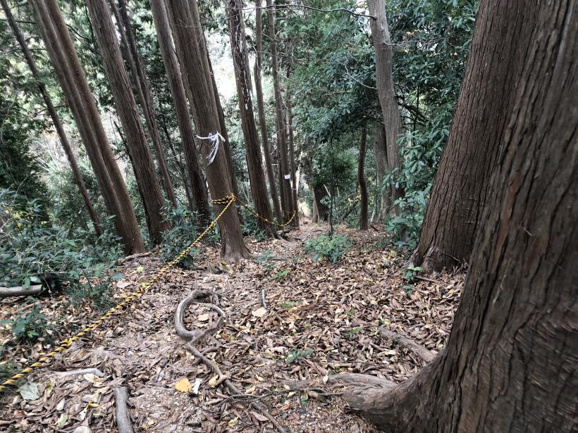 網代弁天山から高尾神社41