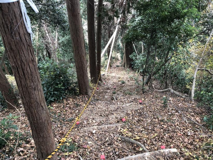網代弁天山から高尾神社42