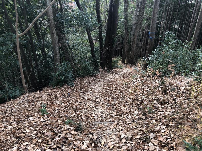 網代弁天山から高尾神社56