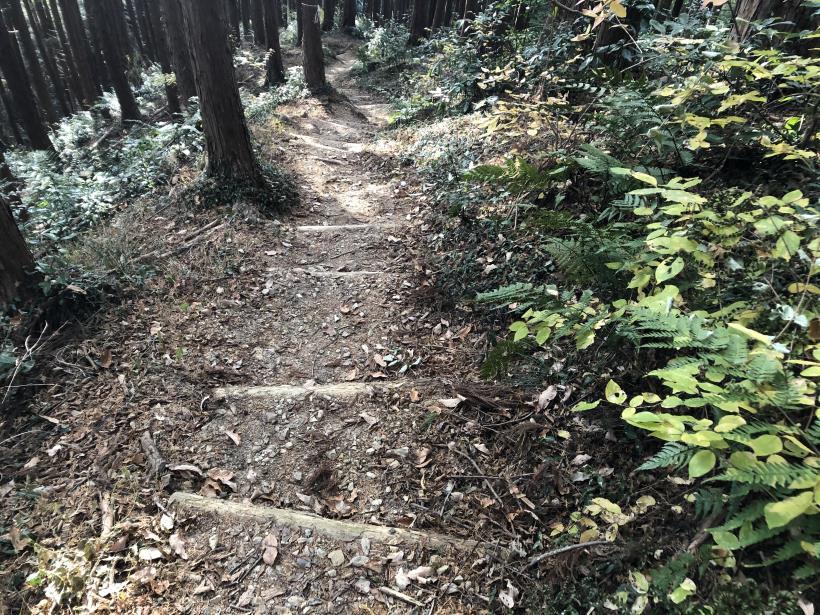 網代弁天山から高尾神社66