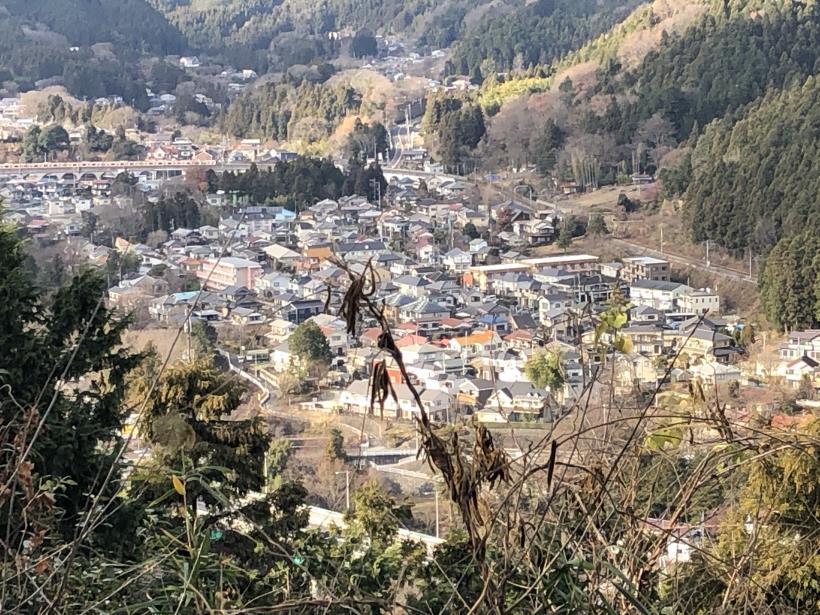 網代弁天山から高尾神社68