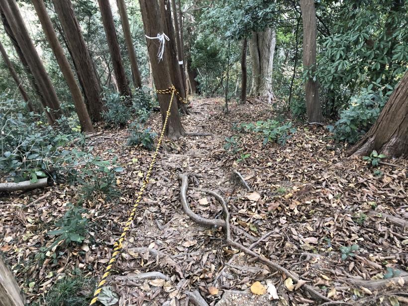 網代弁天山から高尾神社74