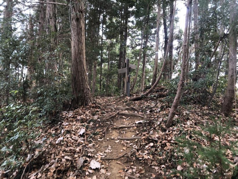 網代弁天山から高尾神社81