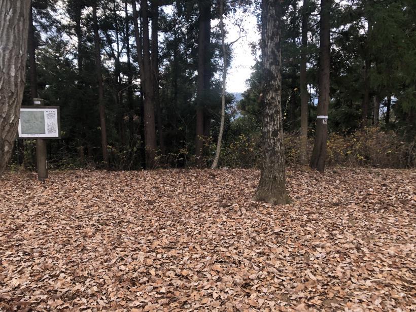 網代弁天山から高尾神社85