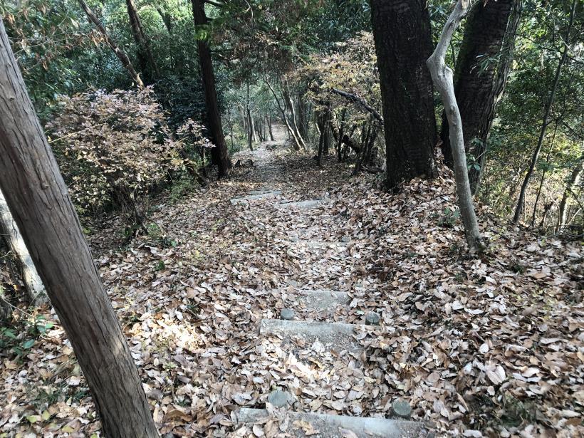 網代弁天山から高尾神社86