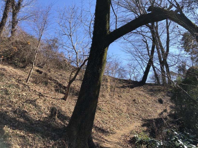 天王山ハイキングコース54