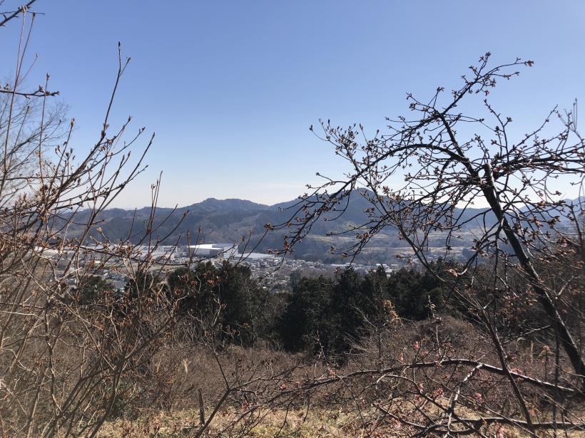 天王山ハイキングコース60