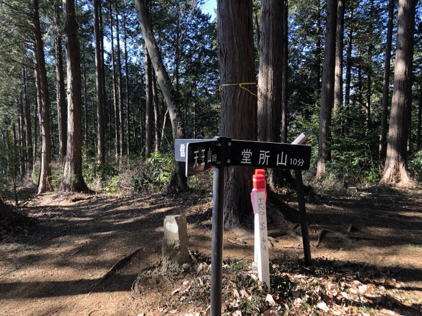 天王山ハイキングコース75