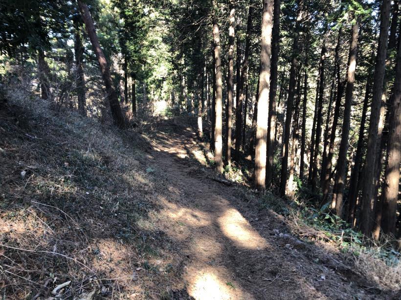 天王山ハイキングコース100