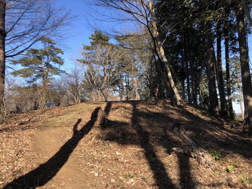天王山ハイキングコース101