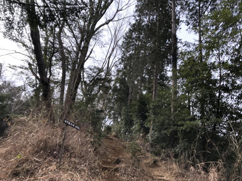 城山湖から大垂水峠へ08