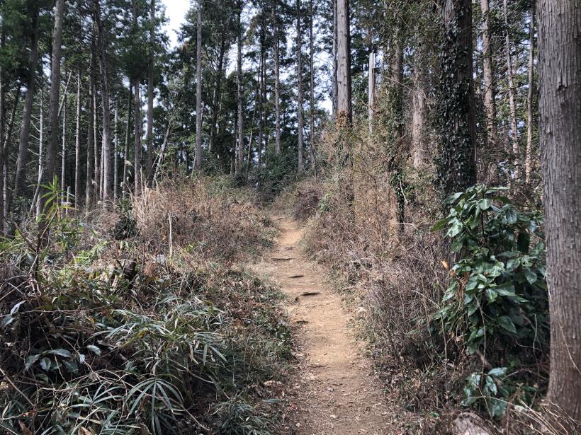城山湖から大垂水峠へ20