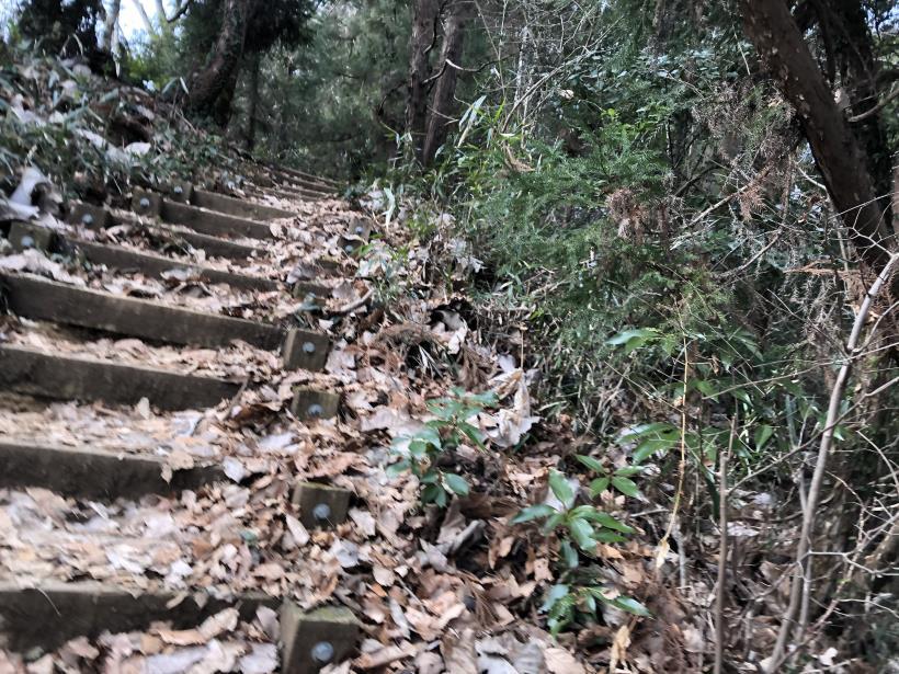 城山湖から大垂水峠へ22