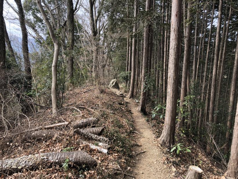 城山湖から大垂水峠へ24