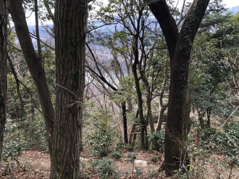 城山湖から大垂水峠へ25