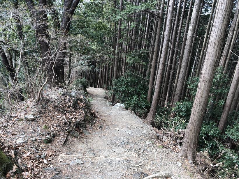城山湖から大垂水峠へ26