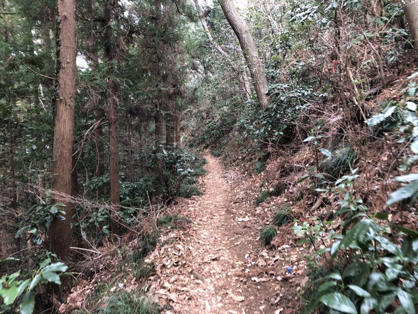 城山湖から大垂水峠へ34