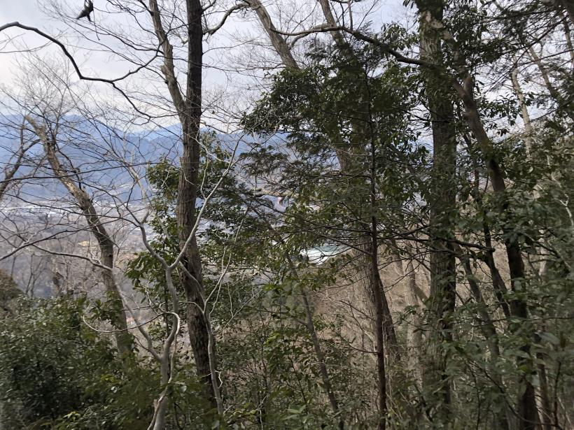 城山湖から大垂水峠へ35