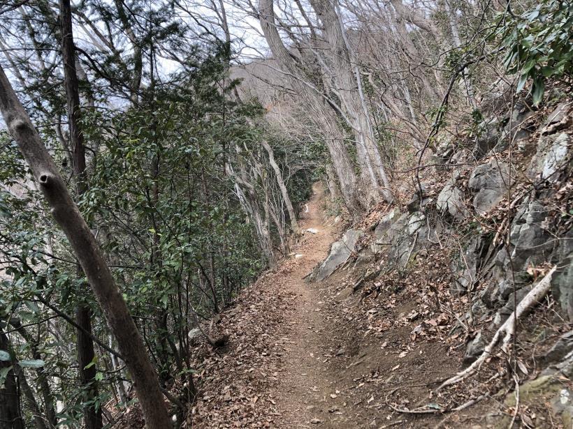 城山湖から大垂水峠へ36