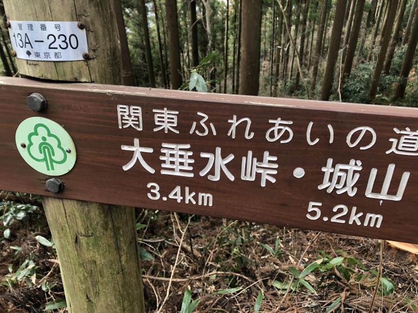 城山湖から大垂水峠へ37