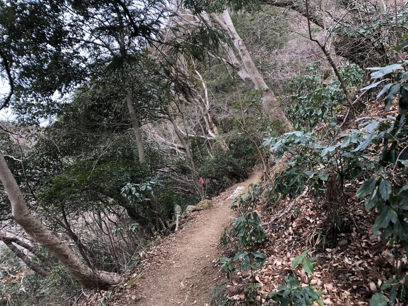 城山湖から大垂水峠へ39
