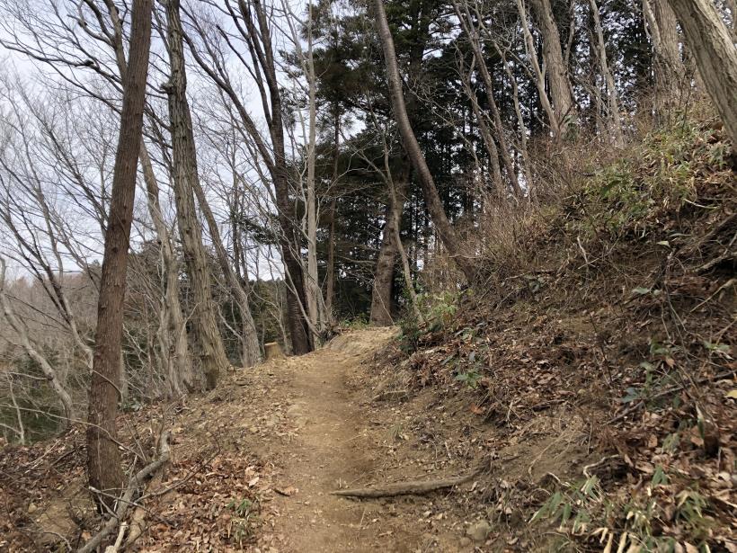 城山湖から大垂水峠へ48