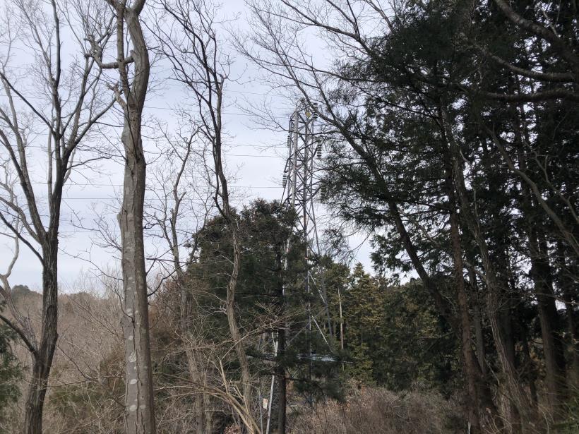 城山湖から大垂水峠へ49