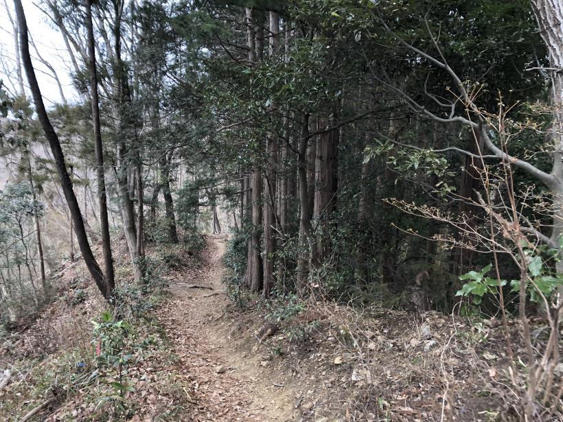 城山湖から大垂水峠へ53