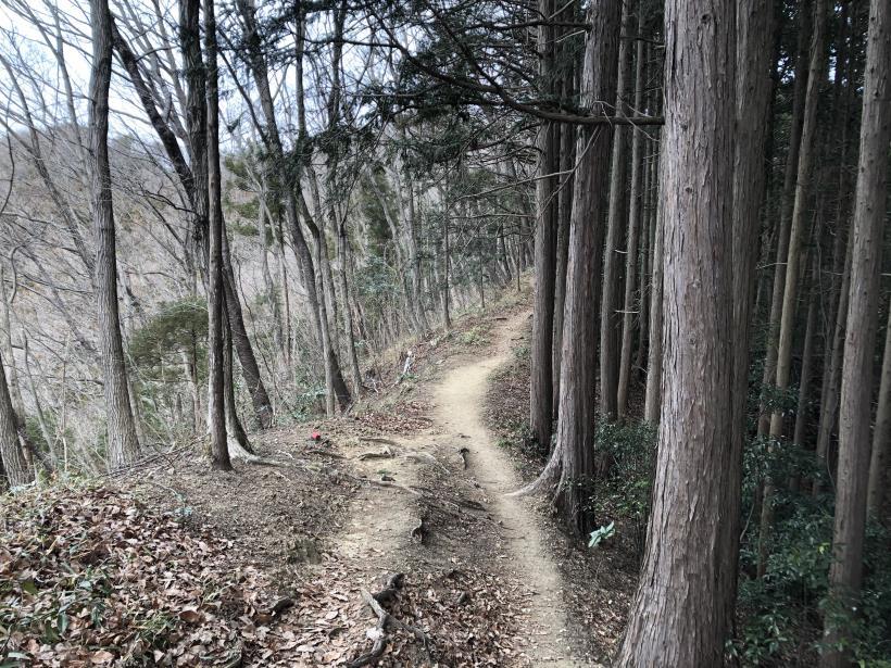城山湖から大垂水峠へ54