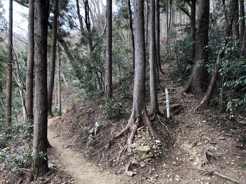 城山湖から大垂水峠へ57