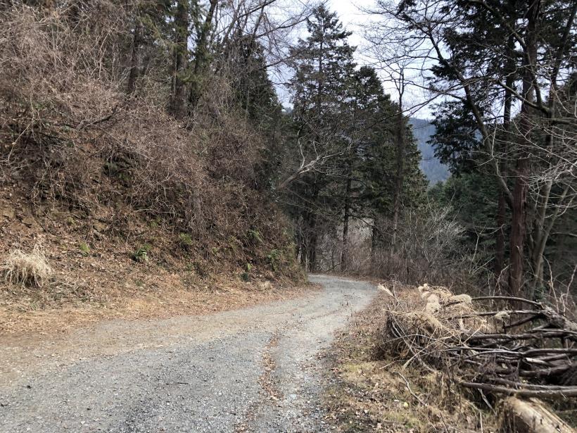城山湖から大垂水峠へ121