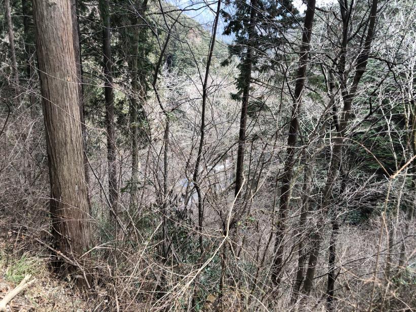 城山湖から大垂水峠へ123