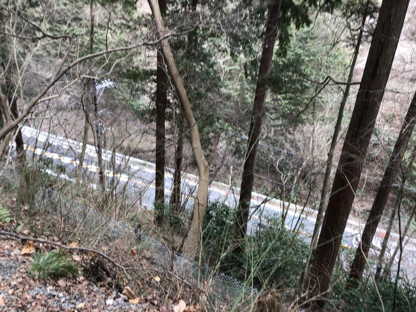 城山湖から大垂水峠へ124